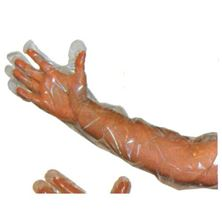 Picture of Obstetric Gloves