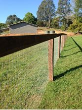 Picture of Horse Fence (Max - Loc)