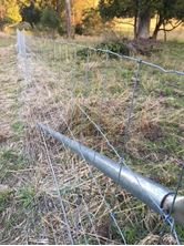 Picture of Sheep Fence (Max-Loc fence)