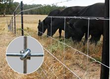 Picture of Exclusion Fences - Six of the Best!