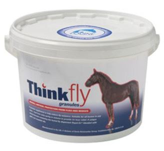 Picture of THINK FLY