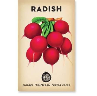 Picture of Little Veggie Patch Co Seeds - Radish 'Cherry Belle'