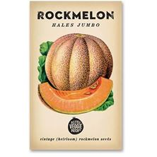 Picture of Little Veggie Patch Seeds - Rockmelon
