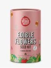 Picture of Little Veggie Patch Co - Edible Flowers Seed Kit
