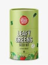 Picture of Little Veggie Patch Co - Leafy Greens Seed Kit