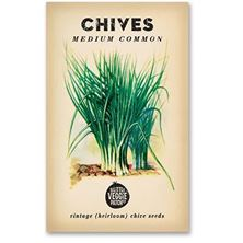 Picture of Little Veggie Patch Co Seeds - Chives 'Medium Common' Heirloom