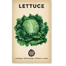 Picture of Little Veggie Patch Co Seeds - Lettuce 'Boston'