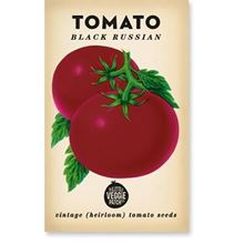 Picture of Little Veggie Patch Co Seeds - Tomato 'Black Russian'