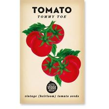 Picture of Little Veggie Patch Co seeds - Tomato 'Tommy Toe'